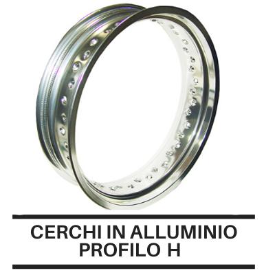 Cerchi In Alluminio Profilo Record